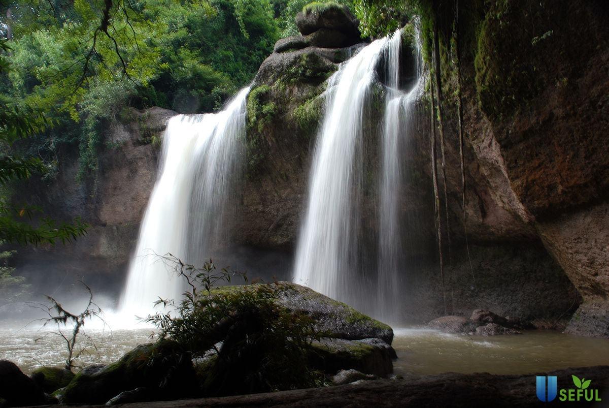 Vườn quốc gia Khao Yai – Điểm đến thú vị khi du lịchThái Lan tự túc