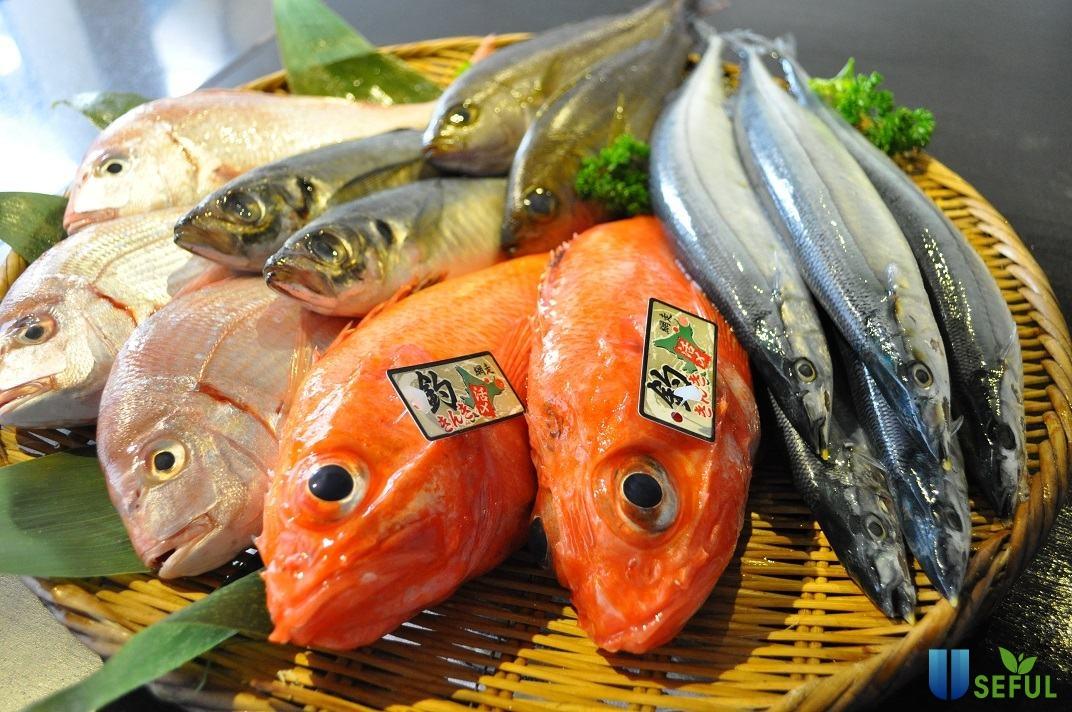 Nhiều loại cá giàu dinh dưỡng được dùng trong bữa ăn của người Nhật