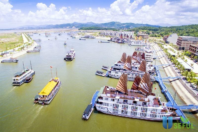 Cảng tàu Tuần Châu