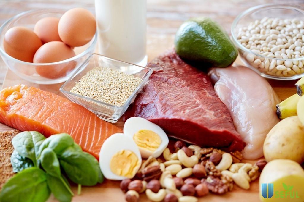 Bổ sung protein cho cơ thể