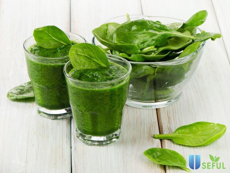 Cải bó xôi cung cấp vitamin C và chất sắt cho cơ thể