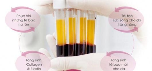 11 tác dụng của huyết tương với sức khỏe, làm đẹp và điều trị bệnh