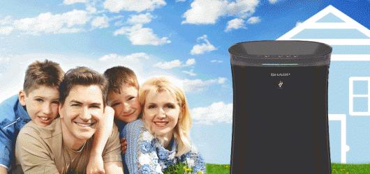 Top 3 máy lọc không khí bắt muỗi hiệu quả tốt bền nhất giá từ 3tr5