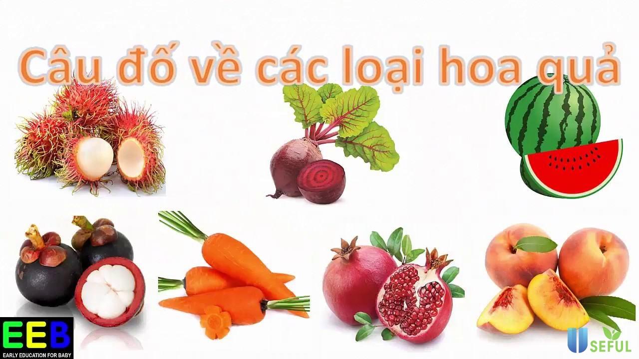 Câu đố cho bé  Đố bé quả gì  Dạy bé các hoa quả tiếng Việt  Giáo ...