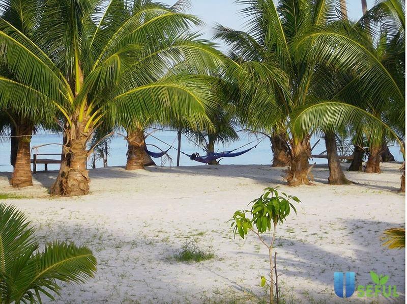 Thả mình ngắm thiên đường biển khi đi du lịch Koh Rong