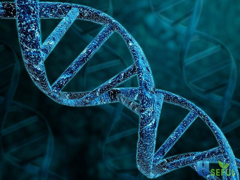 Xét nghiệm để tìm nguy cơ mắc bệnh và ngăn ngừa hiệu quả