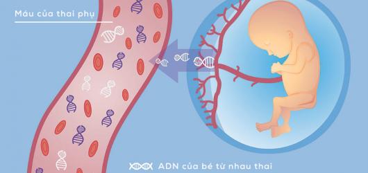 Xét nghiệm di truyền Karyotype là gì, bao nhiêu tiền, tác dụng thế nào
