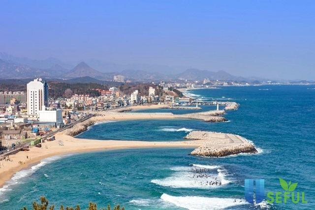 Top 10 bãi biển nổi tiếng nhất ở Hàn Quốc cho mùa hè năm nay