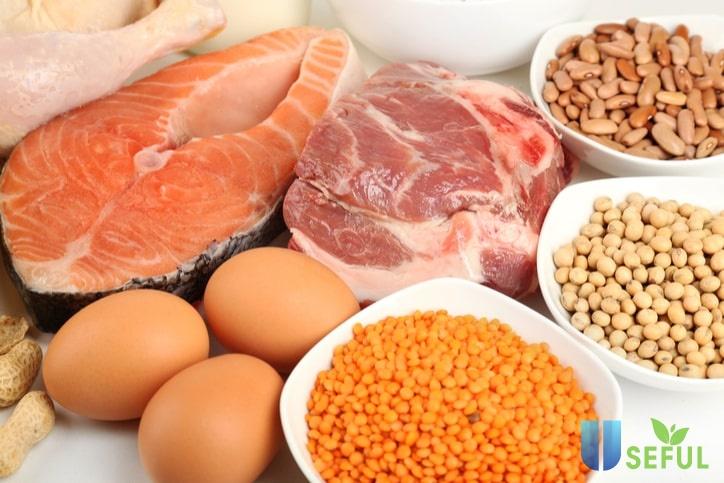 7 loại thực phẩm giàu giúp cung cấp protein tự nhiên cho dân thể hình - Swequity