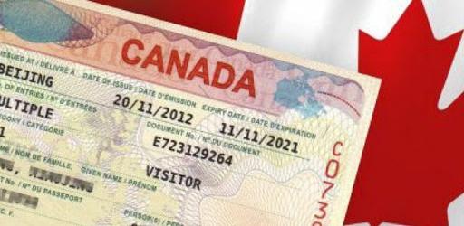Tại sao Start-up Visa Canada lại được chú ý hiện nay?