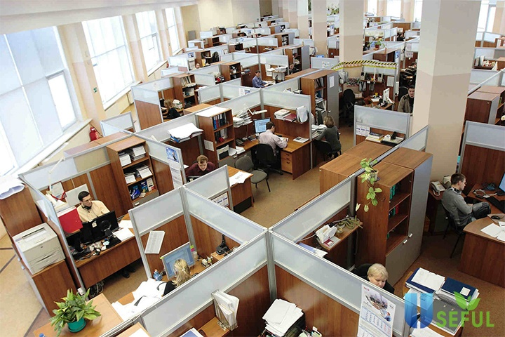 Khái Niệm] Văn phòng truyền thống là gì? Đặc điểm và lợi ích