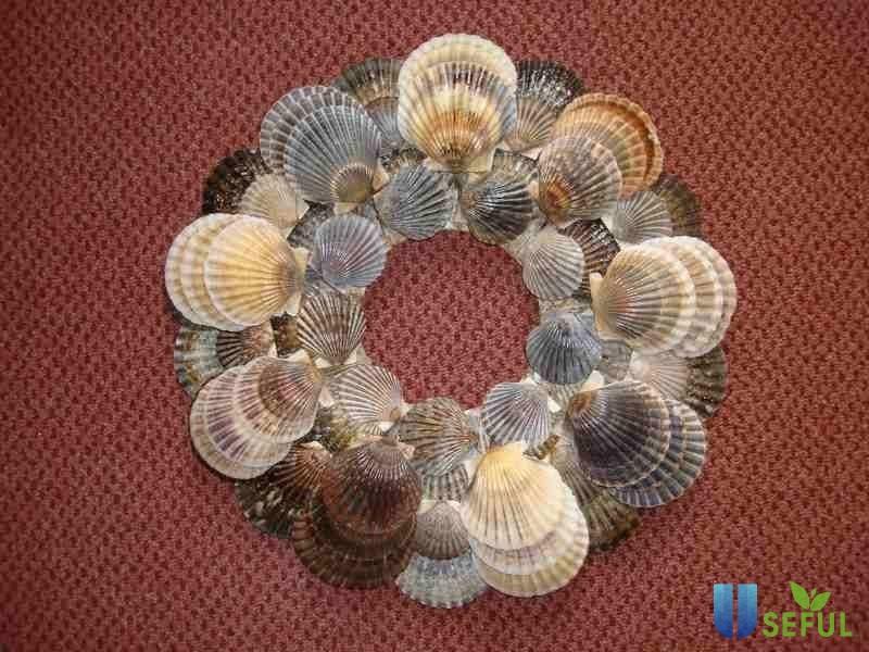 Bờ biển yên bình, hoang sơ với vô vàn vỏ sò